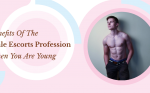 Benefits Of The Male Escort Profession When You Are Young